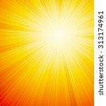 vector orange shiny sun... | Shutterstock .eps vector #313174961