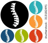 spine diagnostics symbol design | Shutterstock .eps vector #313182491