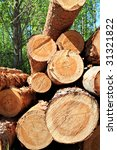 sawn up tree | Shutterstock . vector #31321822