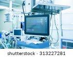 functional vital functions ... | Shutterstock . vector #313227281