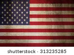 flag of the united states... | Shutterstock . vector #313235285
