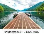 scenic view of  dock in  lake... | Shutterstock . vector #313237007