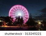 ferris wheel over night sky | Shutterstock . vector #313245221
