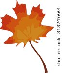 colorful autumn maple leaf | Shutterstock .eps vector #313249664