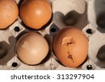 eggs are laid on a tray or... | Shutterstock . vector #313297904