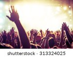 a crowd of people celebrating... | Shutterstock . vector #313324025