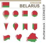 belarus flag collection  12... | Shutterstock . vector #313346519