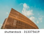 modern building and blue sky | Shutterstock . vector #313375619