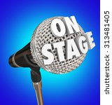 on stage words on microphone to ... | Shutterstock . vector #313481405