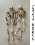 Model Skeletons On Brown Paper...
