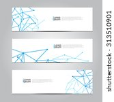 vector design banner network... | Shutterstock .eps vector #313510901