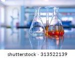 science laboratory glassware... | Shutterstock . vector #313522139