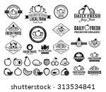 set of fruit logo templates for ...   Shutterstock .eps vector #313534841