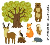 forest animals isolated on... | Shutterstock .eps vector #313596569