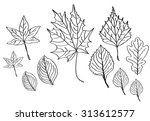 a set of vector autumn leaves ... | Shutterstock .eps vector #313612577