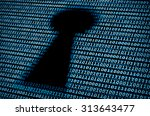 digital keyhole. concept of... | Shutterstock . vector #313643477