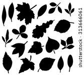 Leaves Black Silhouettes...