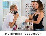 Постер, плакат: Veterinary clinic with a