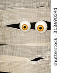 mummy's big shiny yellow eyes.... | Shutterstock .eps vector #313690241