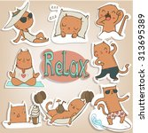 Set With Funny Cats Stickers