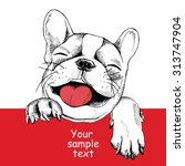 Stock vector card template with portrait of a cheerful dog vector illustration 313747904
