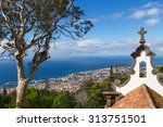 view of funchal from the monte. ... | Shutterstock . vector #313751501