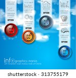 infographic abstract template... | Shutterstock .eps vector #313755179