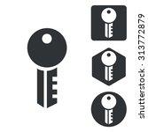 key icon set  monochrome ...