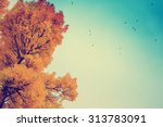 colorful foliage in the autumn... | Shutterstock . vector #313783091