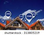 real estate market blue price... | Shutterstock . vector #313805219