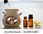 aroma lamp and aromatherapy... | Shutterstock . vector #313841087