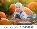 little boy in a pumpkin patch | Shutterstock . vector #313858259