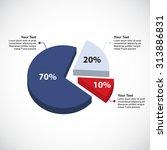 business pie chart   circle... | Shutterstock .eps vector #313886831