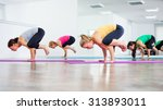 our girls practicing yoga  yoga ... | Shutterstock . vector #313893011
