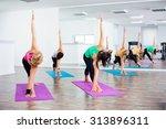 four girls practicing yoga ... | Shutterstock . vector #313896311