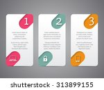 infographic tags design with... | Shutterstock .eps vector #313899155