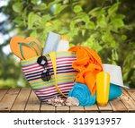 vacations. | Shutterstock . vector #313913957
