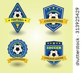 football vintage badges and... | Shutterstock .eps vector #313925429