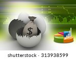 money bag with eggs and egg... | Shutterstock . vector #313938599