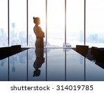 woman looking at modern city | Shutterstock . vector #314019785
