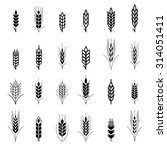 wheat ear symbols for logo... | Shutterstock .eps vector #314051411