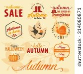 autumn design elements and... | Shutterstock .eps vector #314080871
