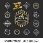 vintage logo template. elegant... | Shutterstock .eps vector #314101667