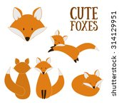 set of cute foxes. vector... | Shutterstock .eps vector #314129951