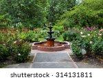 Stock photo rose garden 314131811