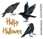 Watercolor Black Crows   Poste...