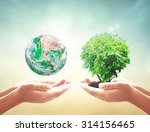 ecology concept. elements of...   Shutterstock . vector #314156465