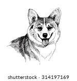 Puppy Dog Hand Drawn  Black An...