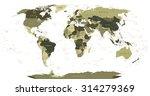 detailed world map in... | Shutterstock .eps vector #314279369