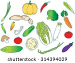 vegetable | Shutterstock .eps vector #314394029